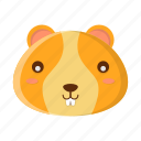 animal, cute, face, hamster, pet