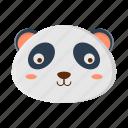animal, nature, panda, pet, zoo