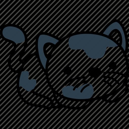 animal, animals, cat, cute, pet icon