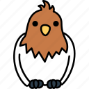 animal, animals, bird, cute, wild icon