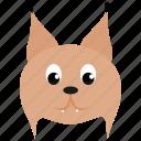 animal, brown, face, feline, linx, wild icon