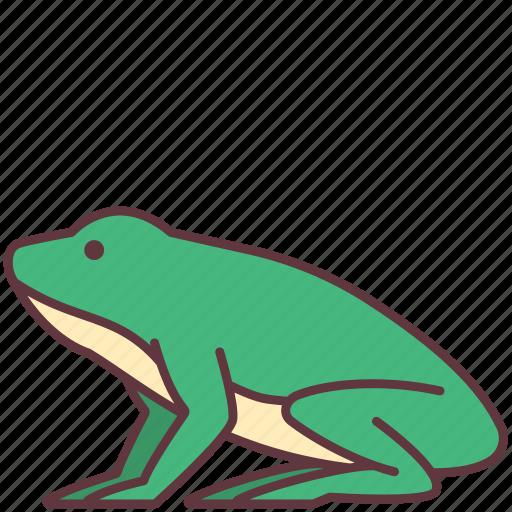 Amphibian, animal, creature, frog, wild icon - Download on Iconfinder