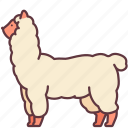 alpaca, animal, llama, mammal, pet, zoo icon