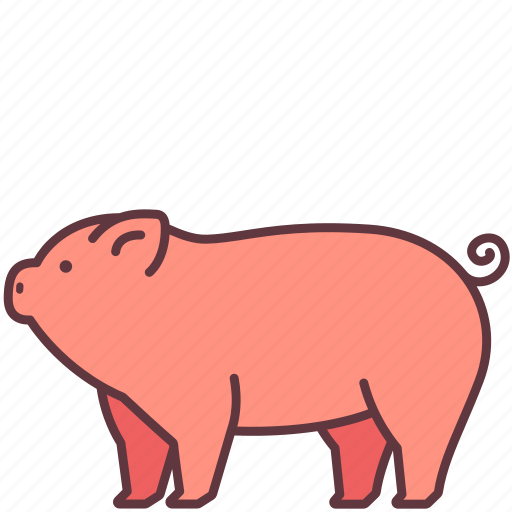 animal, domestic, farm, mammal, pet, pig icon