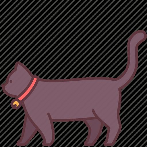animal, cat, domestic, fur, kitten, pet, tail icon