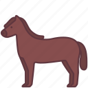 animal, domestic, farm, horse, pet, zoo icon