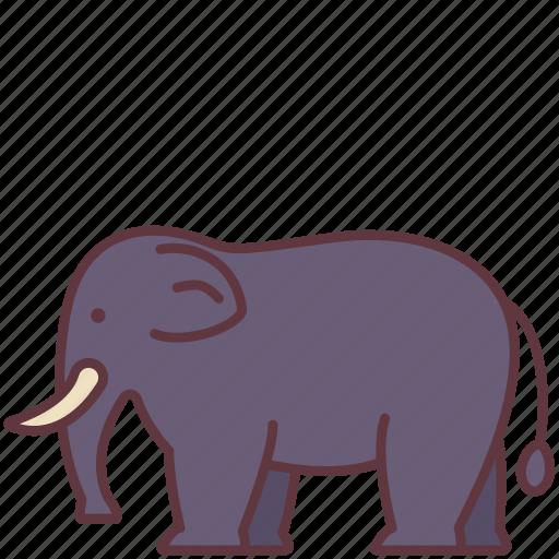 Animal, creature, elephant, mammal, wild, zoo icon - Download on Iconfinder