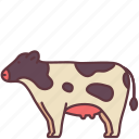 mammal, pet, farm, milk, animal, domestic, cow