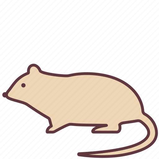 animal, creature, mouse, pet, rat icon