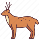animal, creature, deer, mammal, wildlife, zoo icon