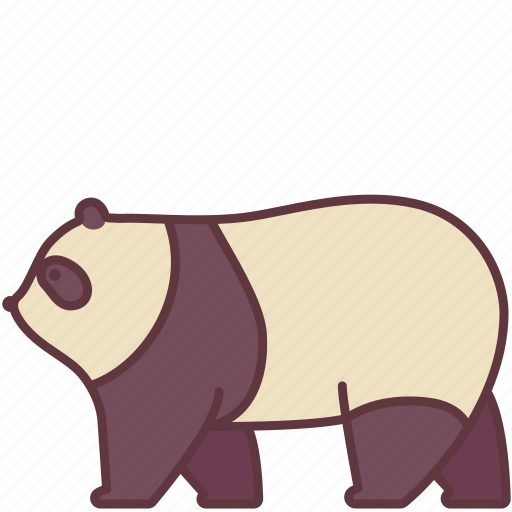 animal, bear, fluffy, mammal, panda, wild, zoo icon