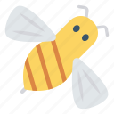 animal, bee, bug, fly, insect icon