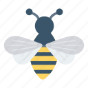 bee, bird, bug, fly, insect