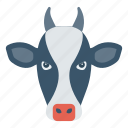 animal, buffalo, cow, farm, zoo