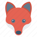 animal, forest, fox, mammal, zoo
