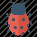 bee, bug, fly, insect, ladybird icon