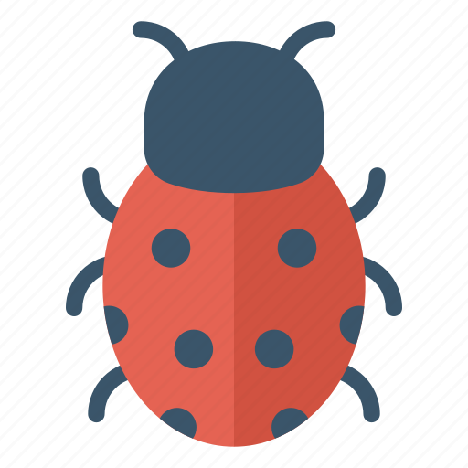Bee, bug, fly, insect, ladybird icon - Download on Iconfinder
