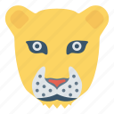 animal, face, leopards, panther, zoo icon