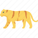 animal, forest, lion, tiger, zoo icon
