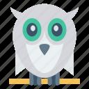 animal, bird, fly, owl, zoo icon
