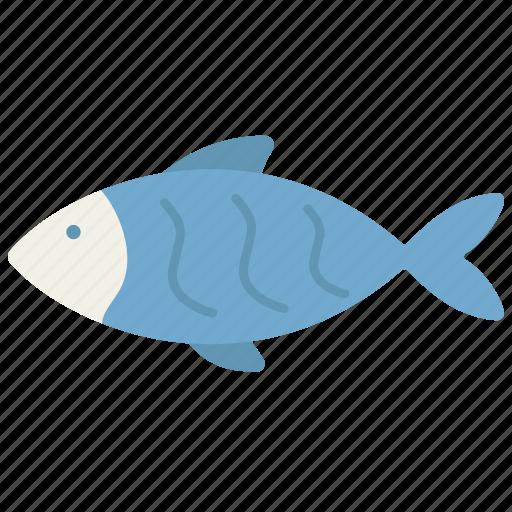 animal, aquatic, domestic, fish, pet, sea, water icon