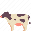 animal, cow, domestic, farm, mammal, milk, pet