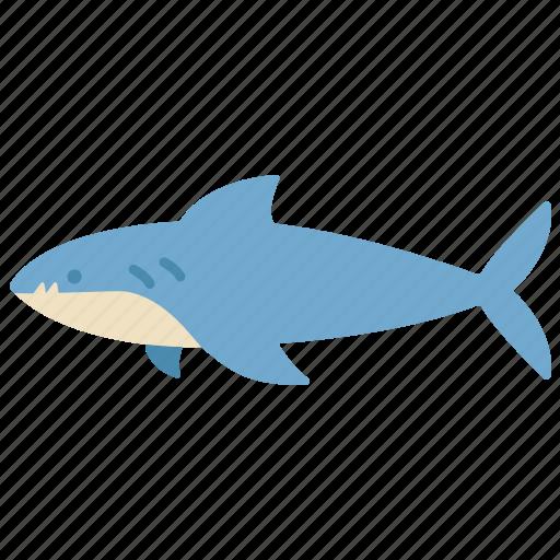animal, aquatic, fish, ocean, sea, shark, water icon