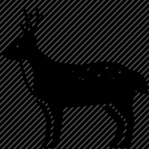 Animal, creature, deer, mammal, wildlife, zoo icon - Download on Iconfinder