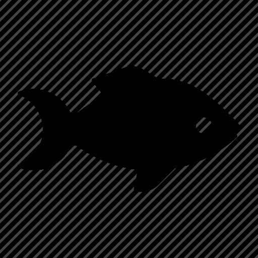 anima, fish, fishery, peixe, pescado, poisson, sea icon