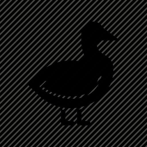 bird, canard, duck, ganso, goose, pato icon
