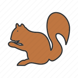 animal, brown, cute, mammal, red, rodent, squirrel icon