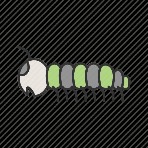 animal, caterpilar, caterpillar, larva, moths, pest, worm icon