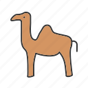 animal, camel, camels, desert, egypt, safari, sand icon