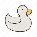 animal, beautiful, bird, duck, ducks, waterfowl, wild icon