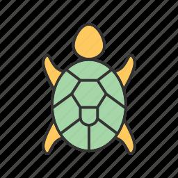 green, ocean, reptile, sea, swimming, turtle, underwater icon