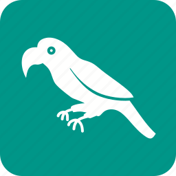 bird, cute, fly, flying, green, jungle, parrot icon