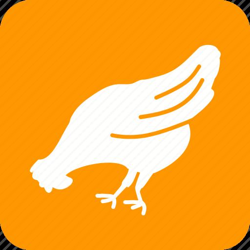 animal, bird, chicken, farm, hen, hens, poultry icon