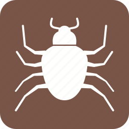 beetle, bug, crawler, insect, ladybug, pest, termite icon
