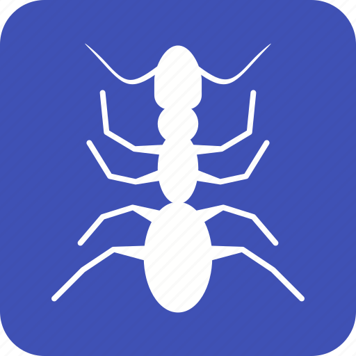 ant, beetle, bug, insect, pest, termite icon
