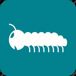 animal, caterpillar, larva, moth, moths, pest, worm icon