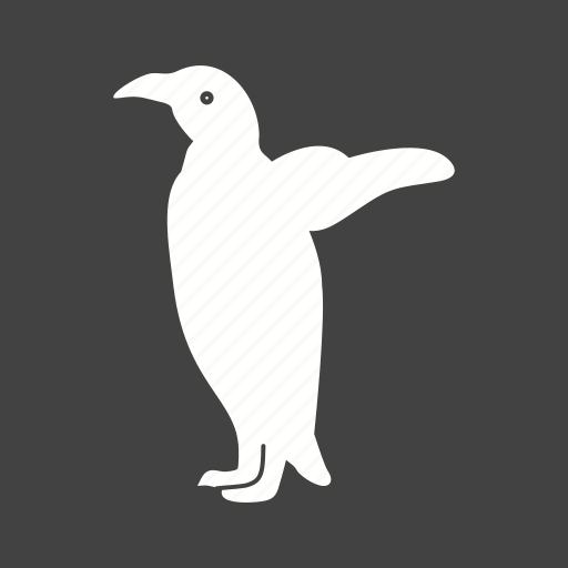 animal, bird, cute, penguin, penguins, snow, young icon