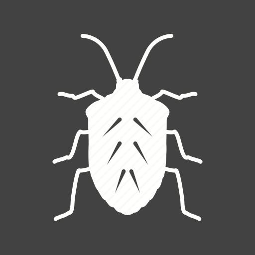 ant, beetle, bug, crawler, moth, pest, termite icon