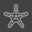 ocean, sea, shell, shells, star, starfish, summer icon