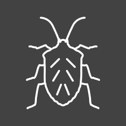 ant, beetle, bug, crawler, moth, pest, termite icon