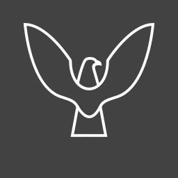 bird, eagle, falcon, flying, sky, wing icon