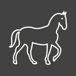competition, horse, horseback, horses, race, racing, riding icon