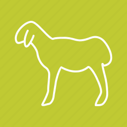 animal, domestic, farm, mammal, sheep, vertebrate, wool icon
