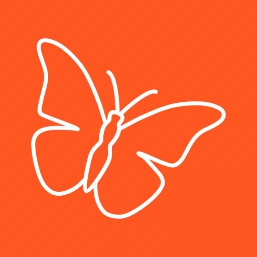 ant, bee, beetle, bug, insect, ladybug, wings icon