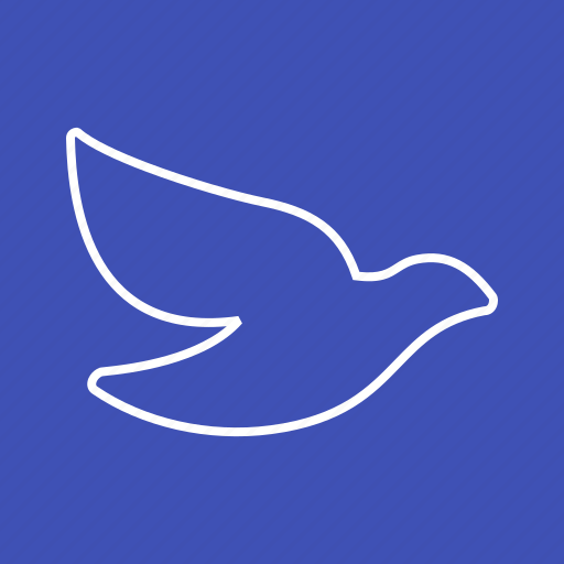 bird, dove, flying, nature, peace, pigeon, sky icon
