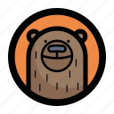 animal, bear, face, teddy icon